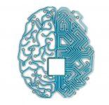 Microprocessor (CPU) with human brain.